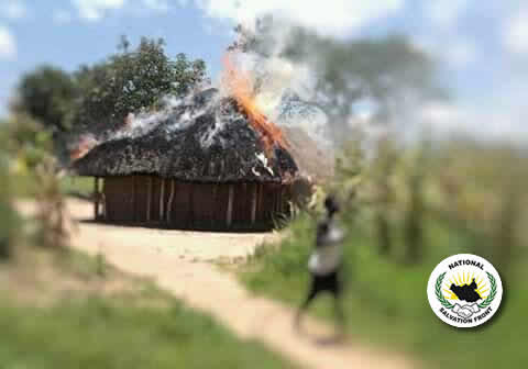 15 civilians executed as SSPDF and SPLA-IO continue to commit atrocities